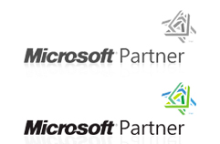 Microsoft Partner silver web development